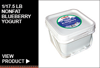 1/17.5LB NONFAT BLUEBERRY YOGURT